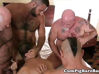 Bareback (Gay);Bears (Gay);Group Sex (Gay);Bareback Cum Pigs;HD Gays Bear barebacked...